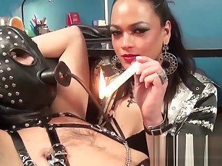 bdsm shelady female-dominator